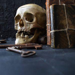 Deformed Human Skull