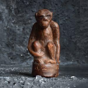 Curious Monkey c.1910