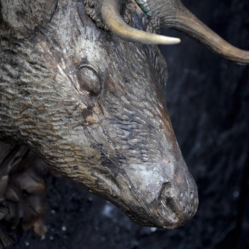 Deer's Head Trophy