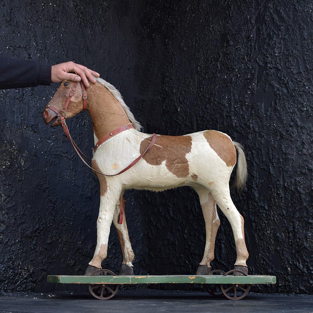 The German Horse